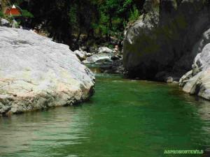 Allaro Un tratto del torrente in risalita