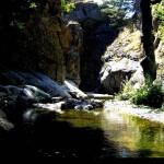 Torrente Menta poco prima delle cascate Maisano