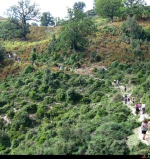 Escursione a monte Cerasia