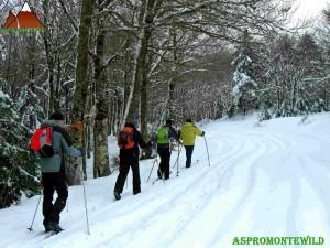 Escursionisti su sci da fondo