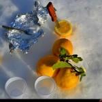 il necessario per una granita al limone tra una sciata ed un'altra