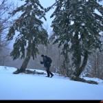 un lieve pendio sul percorso da fondo escursionismo