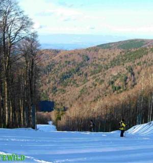 Sci da fondo escursionismo sulla pista da sci
