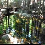 Torrente Ferraina vicino al rifugio, ponti per passare nell'area picnic