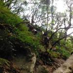 Sentiero di risalita dalla cascata Mundu