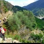 il sentiero con a destra la valle per tornare indietro