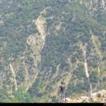 Località Cicutà, vallone del Ferraina