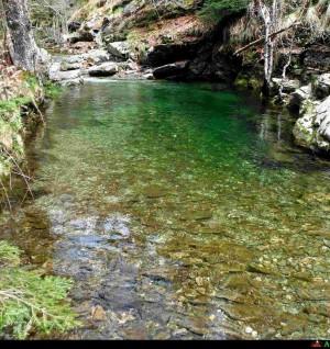 Tour delle cascate Pozza sul torrente Aposcipo