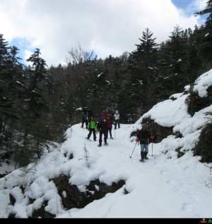 voglia di neve ciaspolate in Aspromonte