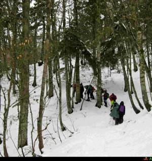 Voglia di neve escursione su ciaspole