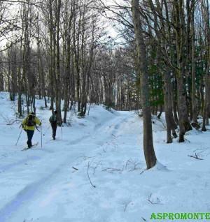 Sci da fondo escursionismo su una sterrata innevata